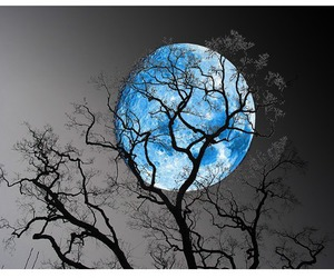 the blue moon image