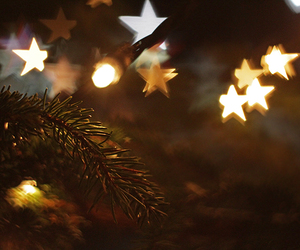 stars, christmas, and tree image