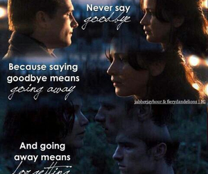 the hunger games, josh hutcherson, and peeta mellark image