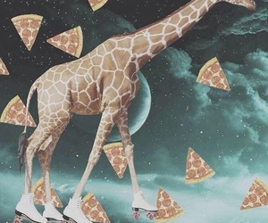 pizza, giraffe, and space image