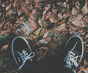vans, autumn, and shoes image