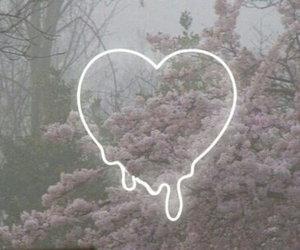 heart, grunge, and flowers image