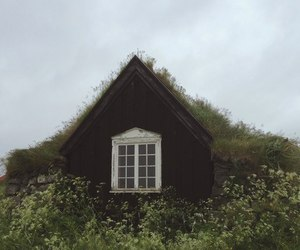 house and nature image