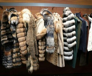 fashion, fur, and clothes image