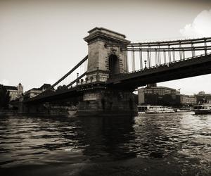 black and white, bridge, and budapest image