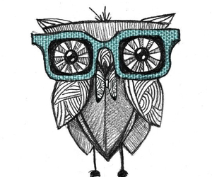 overlay, owl, and transparent image