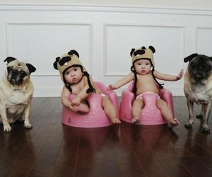 babies, dogs, and OMG image