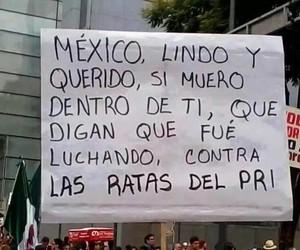mexico, yamecanse, and ayotzinapa image