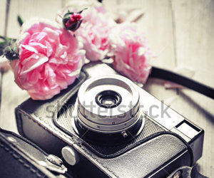 camera, flowers, and pastel image