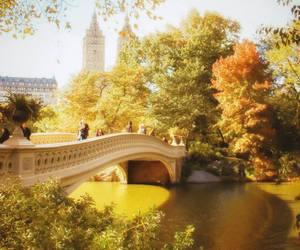 bridge and Central Park image