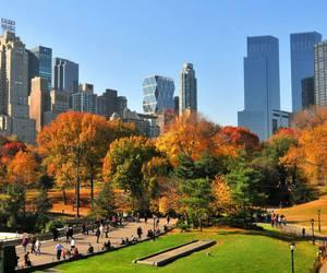 autumn, season, and beautiful image