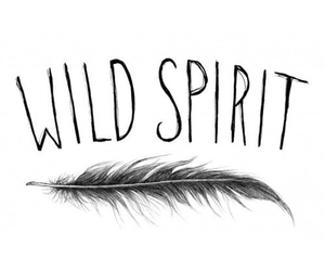 wild, spirit, and feather image