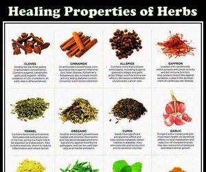 health, herbs, and remedy image