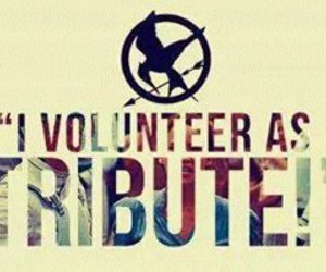the hunger games, tribute, and book image