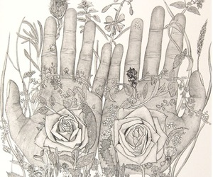 hands, flowers, and drawing image