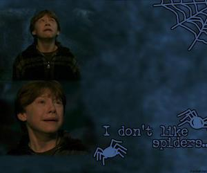 harry potter and rup image