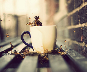 coffee, cup, and photography image