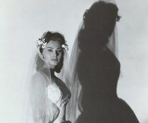 wedding and sophia loren image