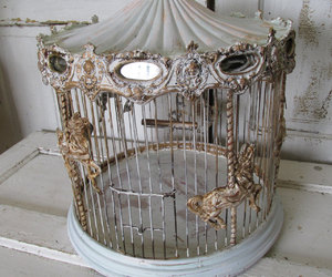 antique, cage, and carousel image