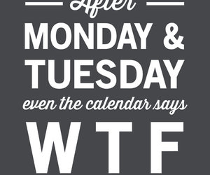 monday, tuesday, and wtf image
