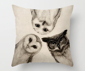 owl, decor, and pillow image