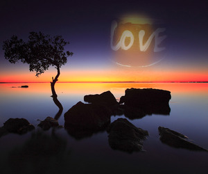 love falling from sky image