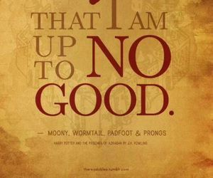 harry potter, quote, and prongs image