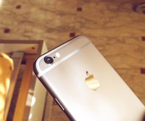 apple, beautiful, and beauty image
