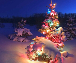 christmas, snow, and lights image
