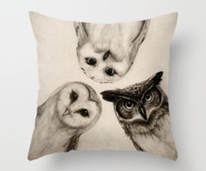 owl, decor, and pillow image