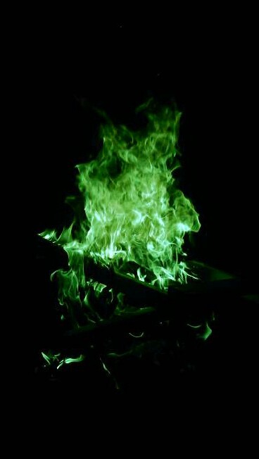 fire and green image