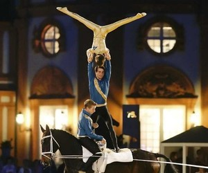 equestrian, horses, and sports image