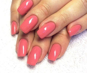 beautiful, fushia, and nails image