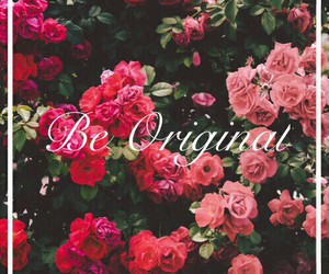 flowers, pink, and love image