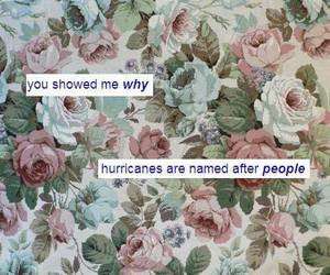 her, him, and hurricane image