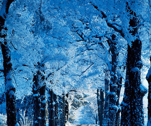 winter, blue, and snow image