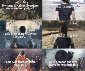 katniss, the hunger games, and mockingjay image