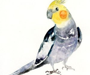 art, cute, and bird image
