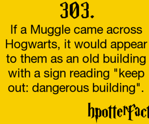 harry potter and hpotterfacts image