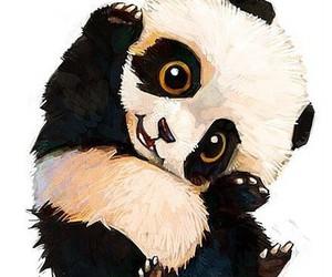 panda, animal, and kawaii image