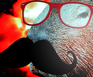 bigode, glasses, and explosao image