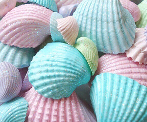 pastel, shell, and blue image