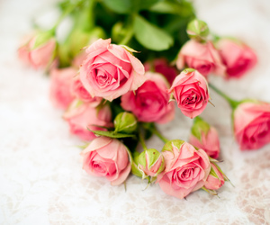 flowers, rose, and romantic image