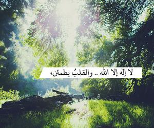 islam, heart, and عربي image