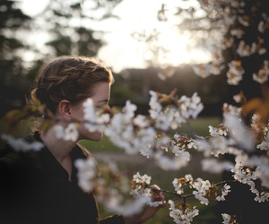 braids, cherry blossom, and flowers image