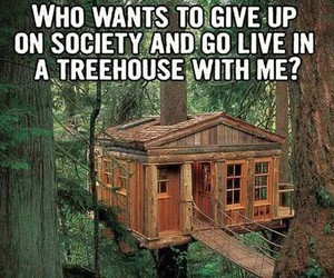 goal, life, and treehouse image