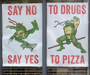 pizza and turtles image