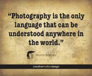 photography, quote, and language image