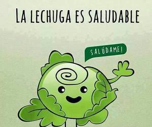 lettuce and saludable image