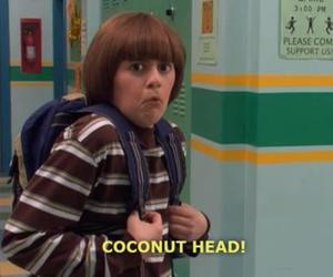 coconut head, coconut, and funny image